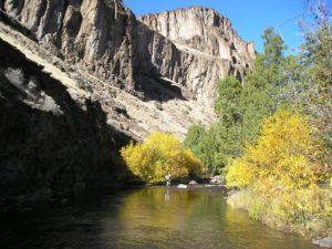 Jarbidge River